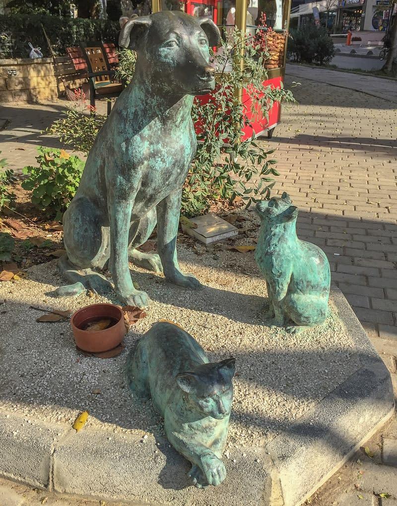 Patsaat kissoista ja koirasta Istanbulissa