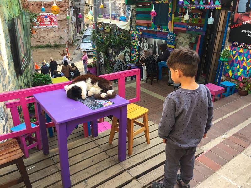 Poika katselee nukkuvaa kissaa värikkäällä kadulla Istanbulissa