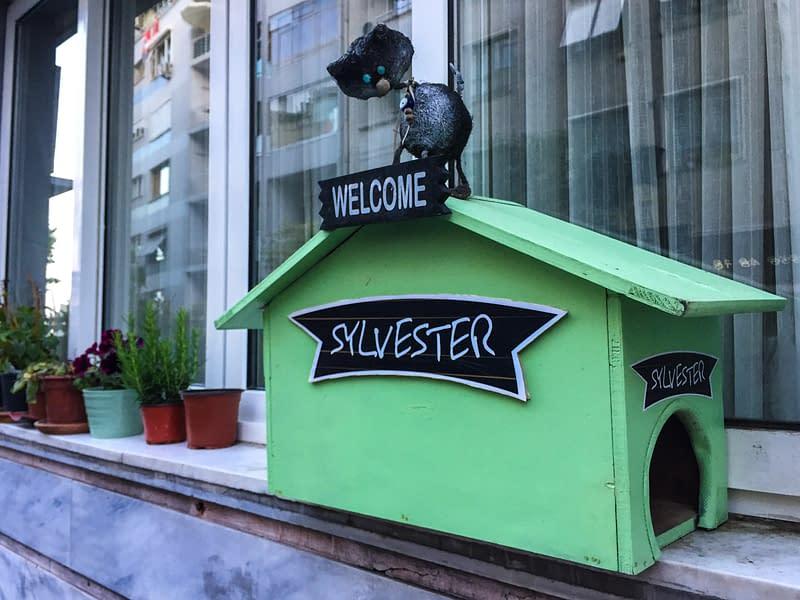 A green cat house in Moda in Istanbul